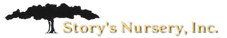 Storys-horizontal-logo